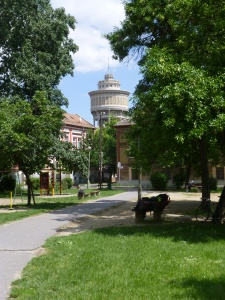 View of tower from park